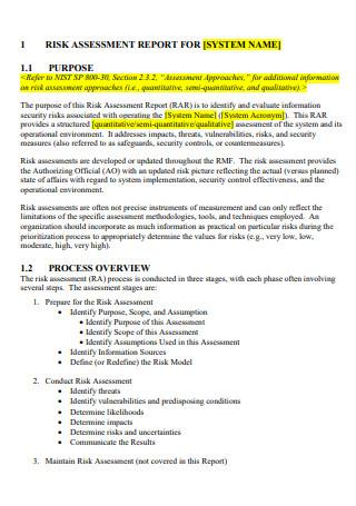 Basic Risk Assessment Report