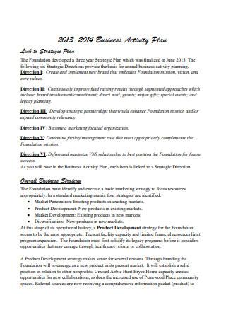 Business Activity Plan