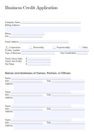 Business Credit Application Fornat