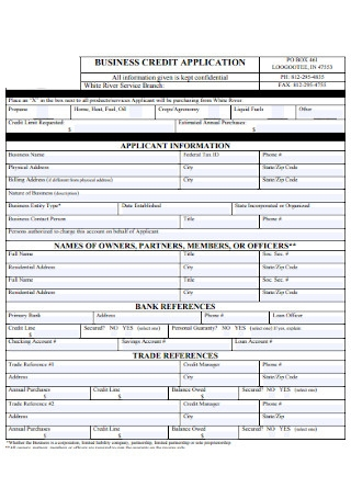Business Information Credit Application