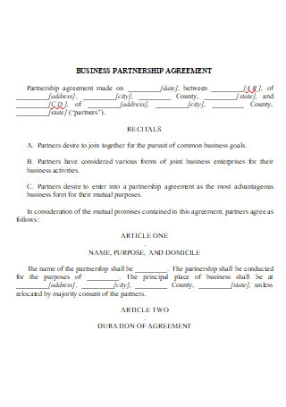 Business Partnership Agreement in DOC