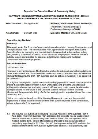 Business Plan Report in PDF