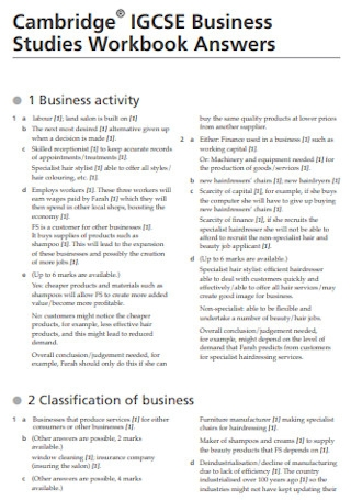 Business Plan Studies Workbook