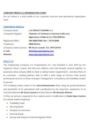 Company Profile and Organizational Chart