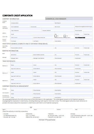 Corporate Business Credit Application Template
