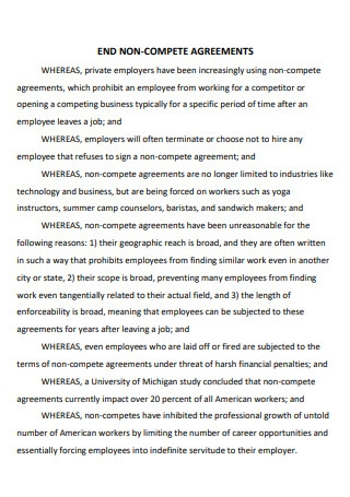 End Non Compete Agreement