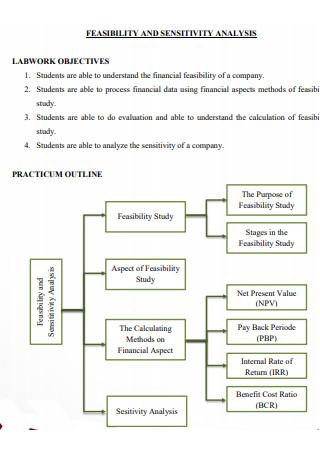 Feasibility amd Sensitivity Analysis