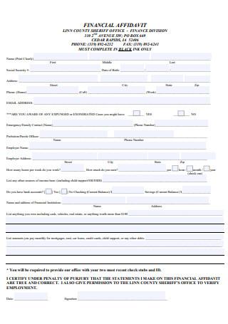 Financial Affidavit Format