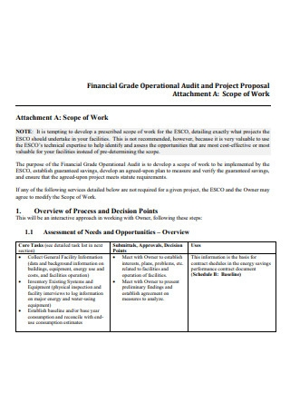 Financial Grade Operational Audit and Project Proposal