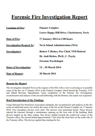 Forensic Fire Investigation Report