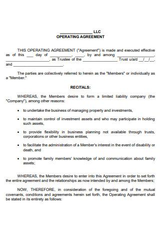 Formal LLC Operating Agreement