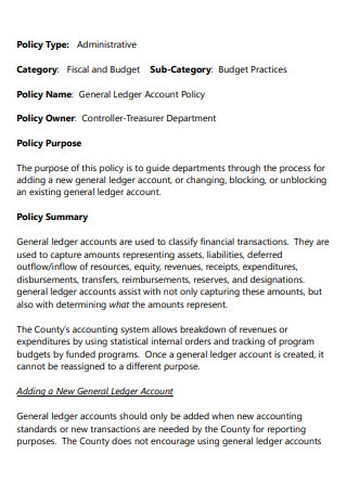 General Ledger Account Policy