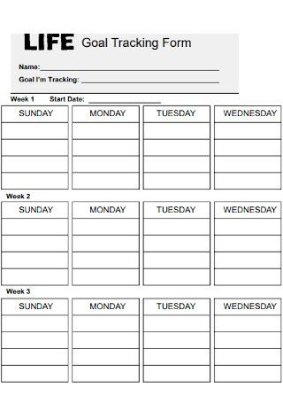 Goal Tracking Form Template