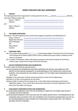 Horse Sale and Purchase Agreement