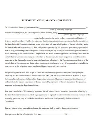 Indemnity and Guaranty Agreement