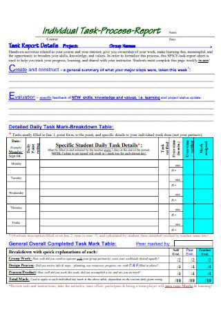 Individual Task Process Report