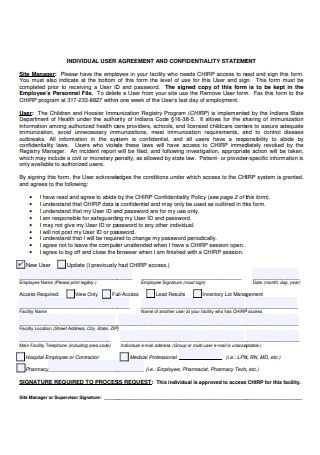 Individual User Agreement and Confidentiality Statement