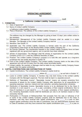 LLC Operating Agreement Example