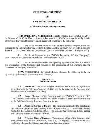 LLC Operating Agreement in PDF