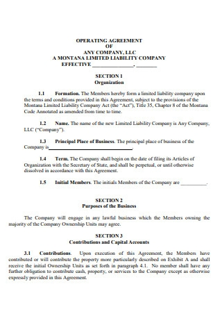 Limited Liability Company Effective Operating Agreement