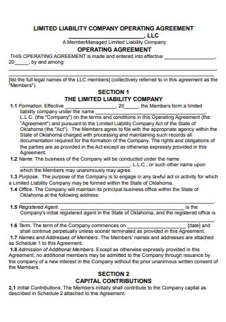 Limited Liability Company Operating Agreement Template