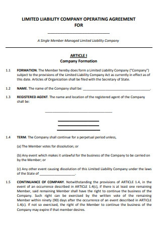 Limited Liability Company Operating Agreement for Company