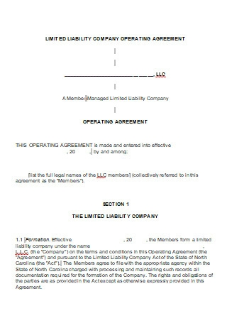 Limited Liability Company Operating Agreement in DOC