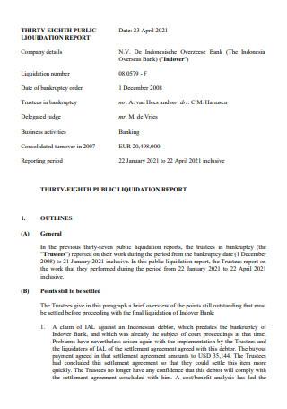 Liquidation Report in PDF