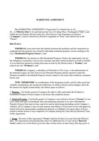 Marketing Agreement Example