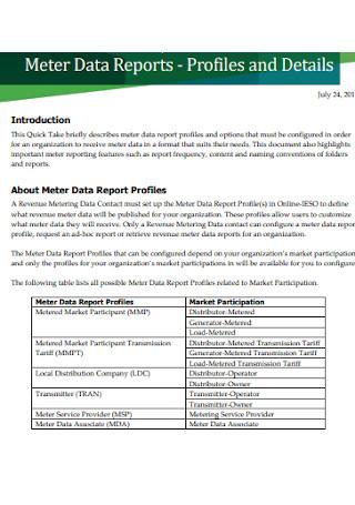Meter Data Reports