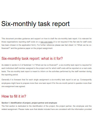 Monthly Task Report