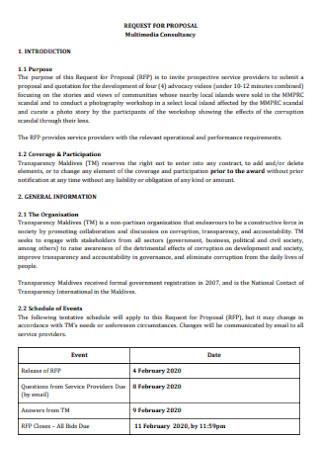 Multimedia Consultancy Proposal