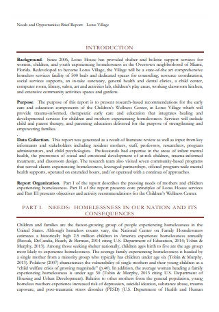 Needs and Opportunities Brief Report