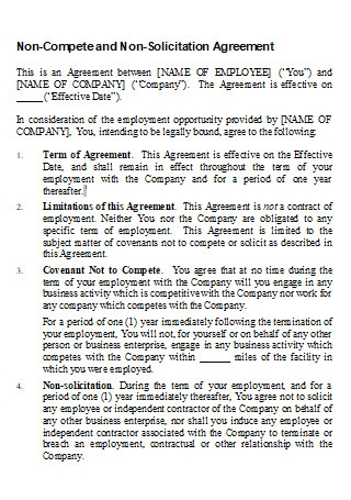 Non Compete and Non Solicitation Agreement