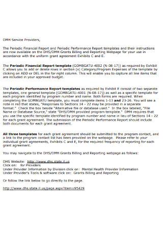 Periodic Financial Report Template