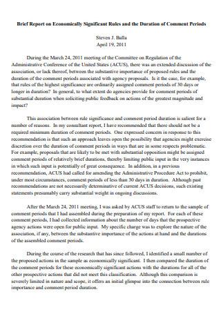 Printable Brief Report