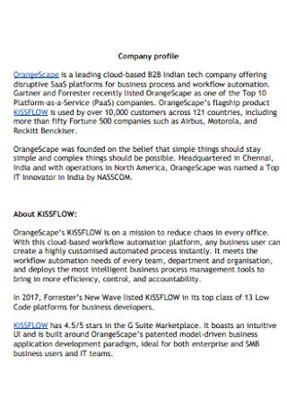 Printable Company Profile