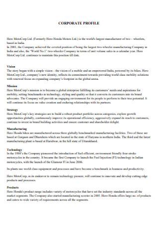 Professional Company Profile
