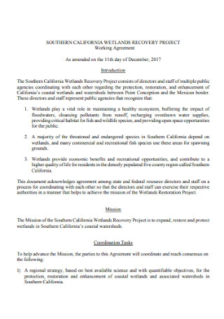 Project Working Agreement