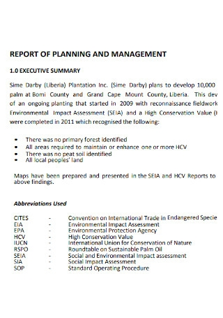 Report of Planning of Management