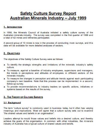 Safety Culture Survey Report