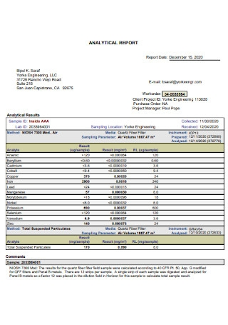 Sample Analytical Report