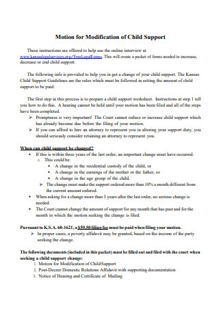 Sample Child Support Modification
