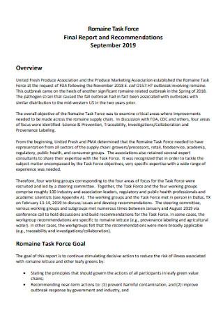 Sample Task Final Report