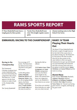 Sports Report Example