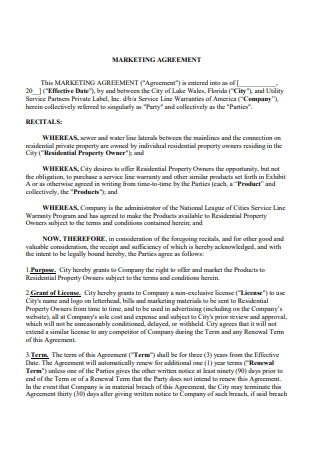 Standard Marketing Agreement
