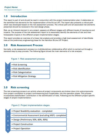Standard Risk Assessment Report