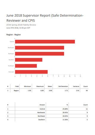 Standard Supervisor Report