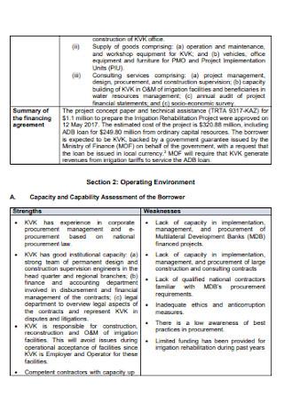 Strategic Procurement Planning Report