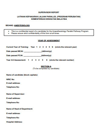 Supervisor Report Format